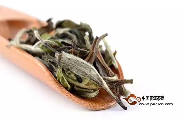 胃寒的人适合喝白茶吗?